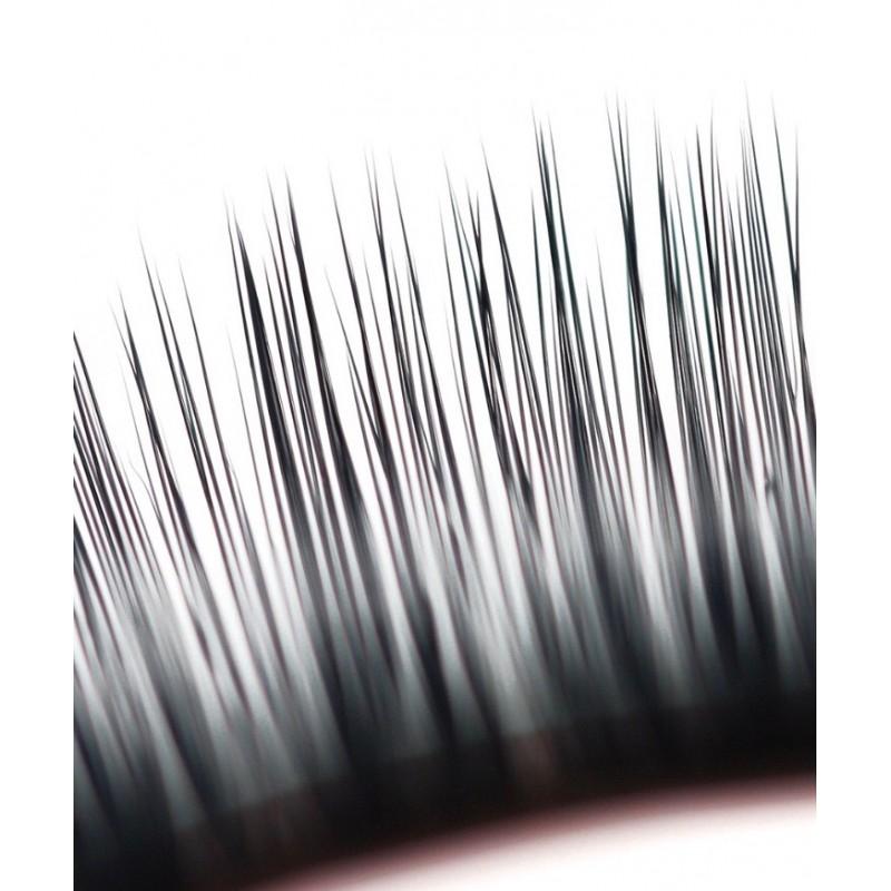 Palm Lashes in C-Curl HD Lashes mit 4 Längen pro Streifen