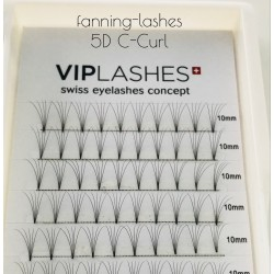 5D Fanning-Lashes in C&D Curl 0,05